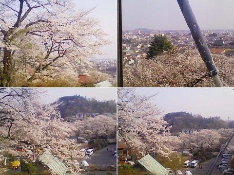 kanuma_senju2013_08