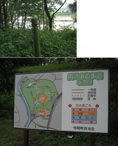 okazakiyama2014_09