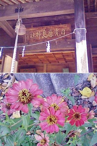 okb_nikkokashima201311_9