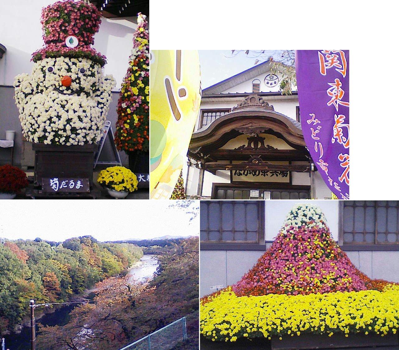 oomama_kiku2013_03.jpg