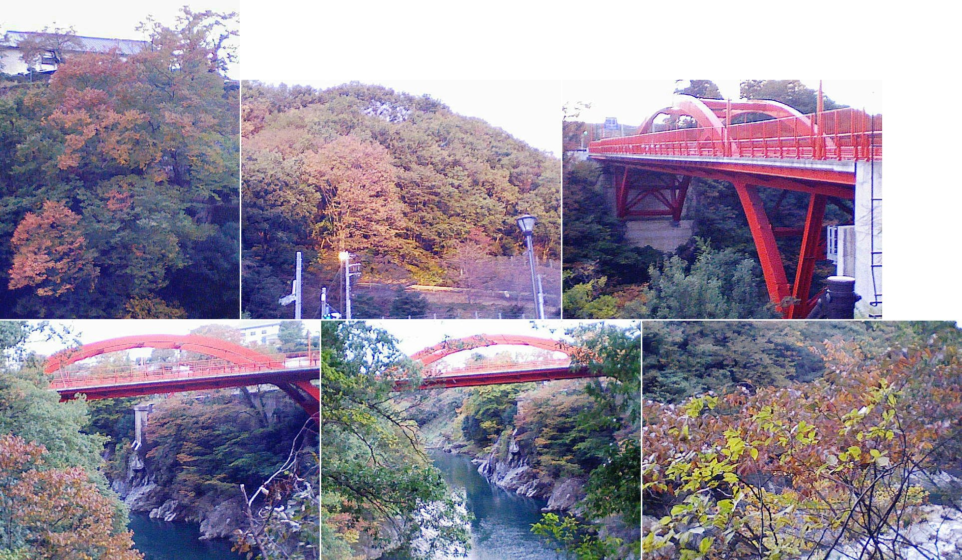 oomama_kiku2013_24.jpg
