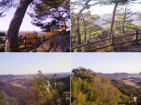 sano_karasawa201212_03