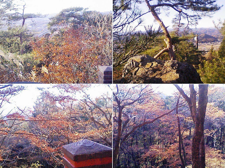 sano_karasawa201212_05.jpg