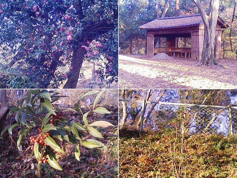 sano_karasawa201212_07.jpg