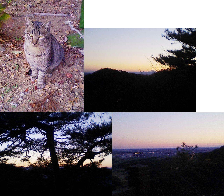 sano_karasawa201212_09.jpg