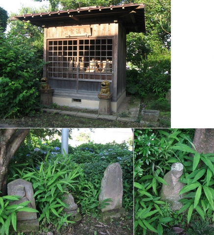 tenmaku_hasu2014_28