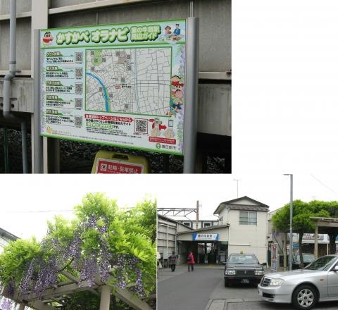 ushijima_fuji2014_03