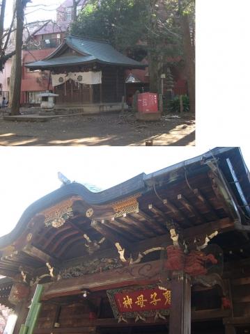 zoshi_kishimojin201501_5