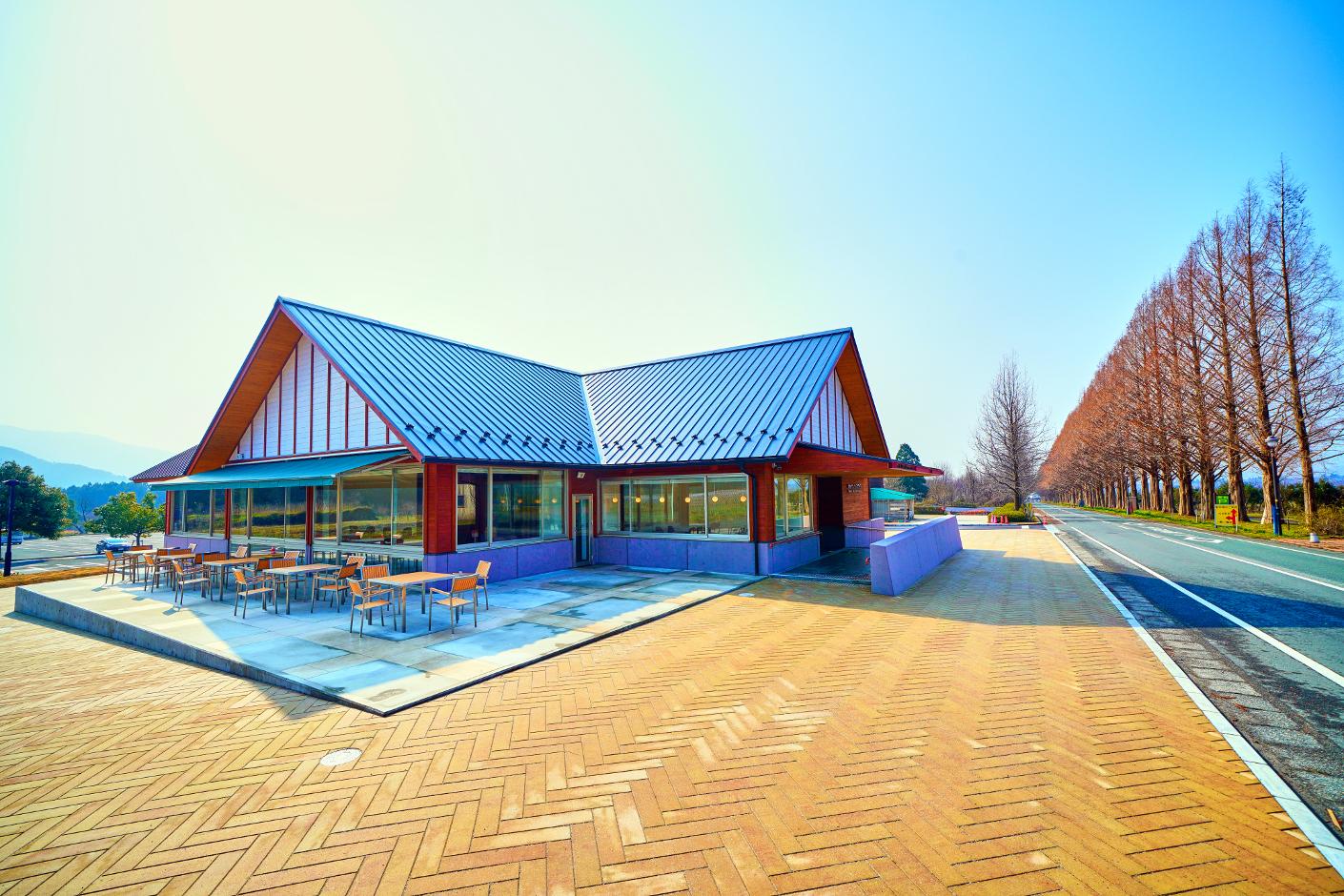 並木カフェ メタセコイア 竣工写真