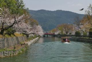 190406okazaki(5).jpg