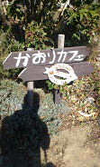 かおりカフェ (1)