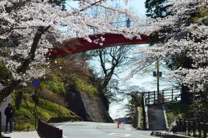 松ヶ岡公園9
