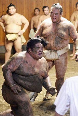 相撲かわいがり