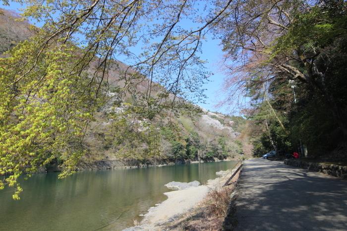 桂川(大堰川)の畔