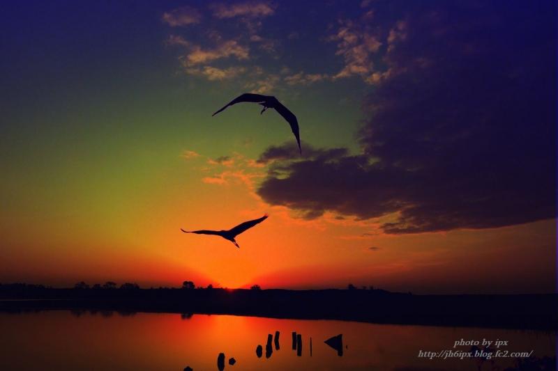 湖畔の朝(blog)
