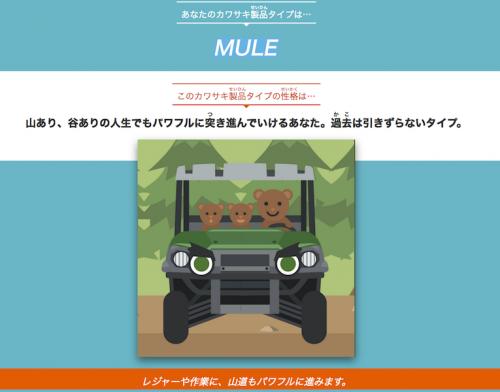 mule川崎診断