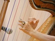 アルパ 楽器名 -