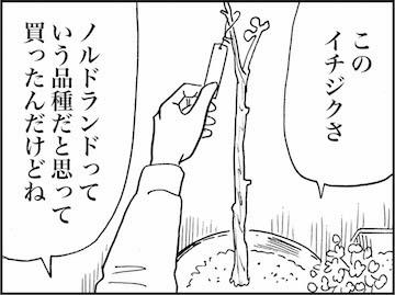 kfc01560-5