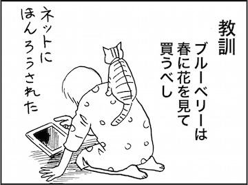 kfc01569-3
