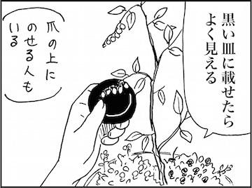 kfc01572-3