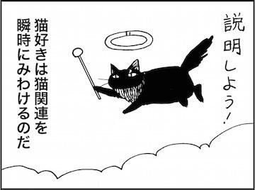 kfc01578-3