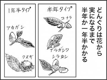 kfc01585-5