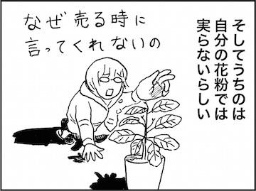 kfc01585-6