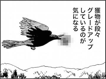 kfc01588-8