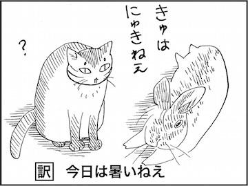 kfc01602-2.jpg