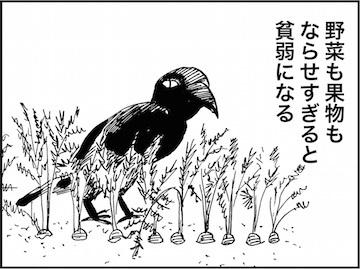 kfc01606-2.jpg