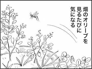 kfc01607-6