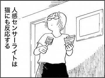 kfc01615-3
