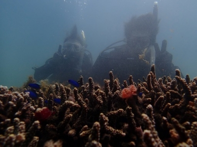 4月27日体験ダイビング海底少年_190429_0067