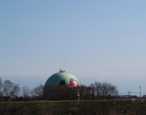 埼玉県 荒川 川幅日本一 イチゴのタンク