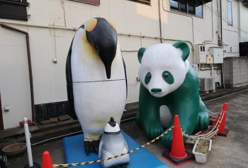 川越 ペンギンとパンダ