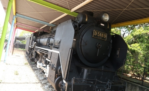 のんほいパーク D51