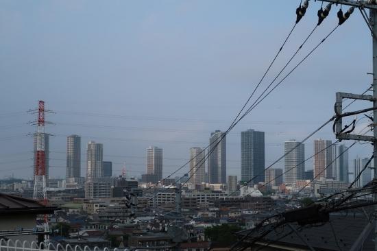 川崎市井田からの眺め