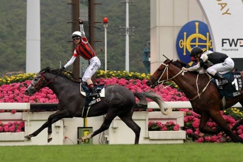 【香港競馬】QEⅡ世ウインブライト強すぎワロタwwww