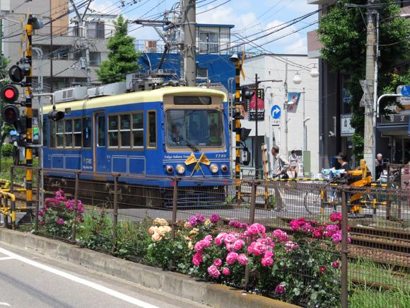 20190517_065 都電荒川線_町屋