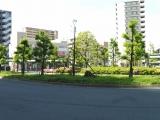 TX三郷中央駅 秋篠宮悠仁親王殿下御誕生記念植樹 全景