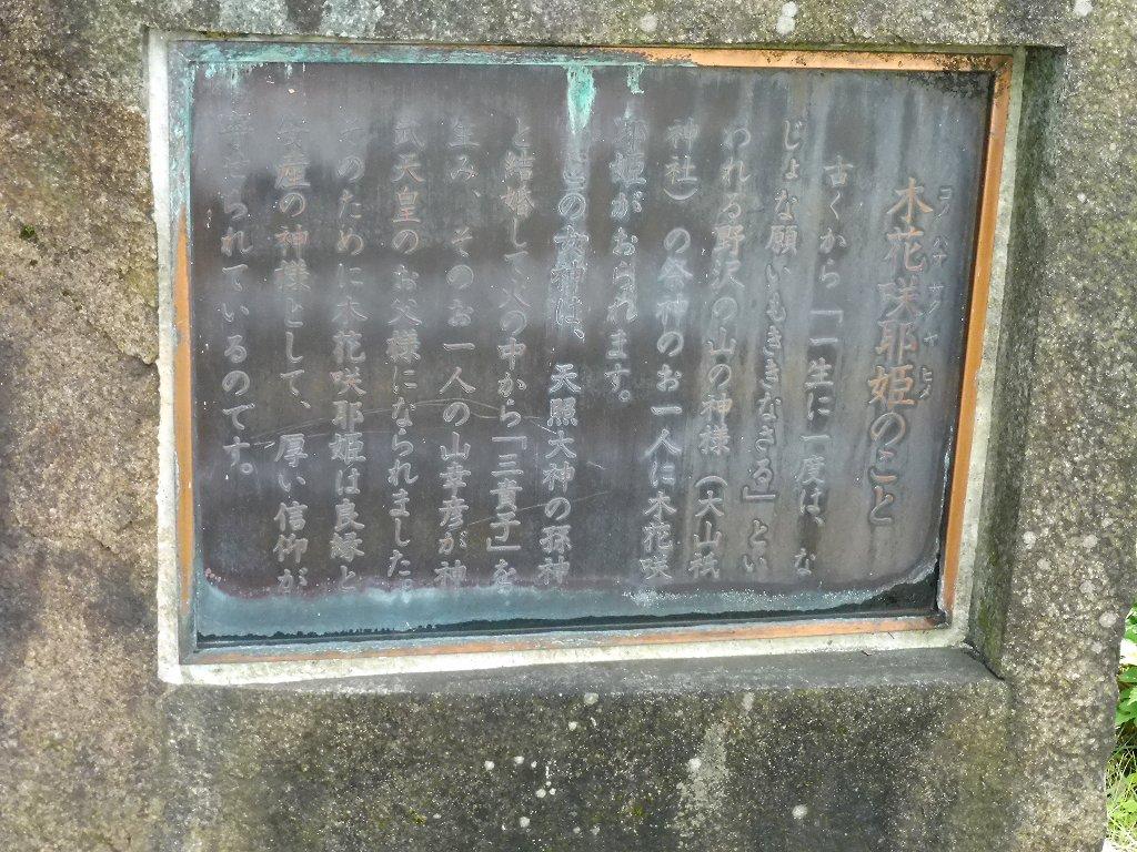 nozawa1_1.jpg