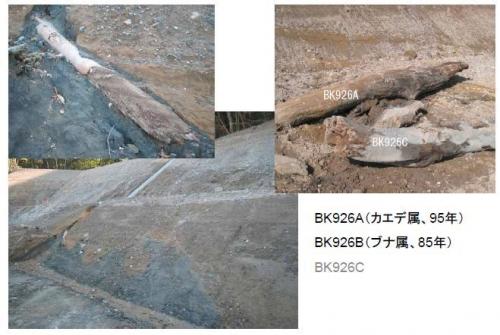 榛名山噴火の理学的年代決定2