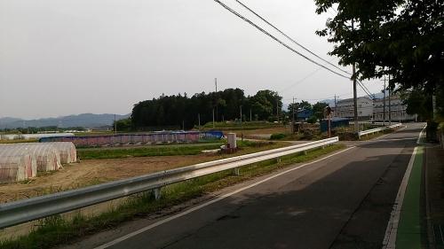 本郷埴輪窯と土師神社諏訪神社古墳13