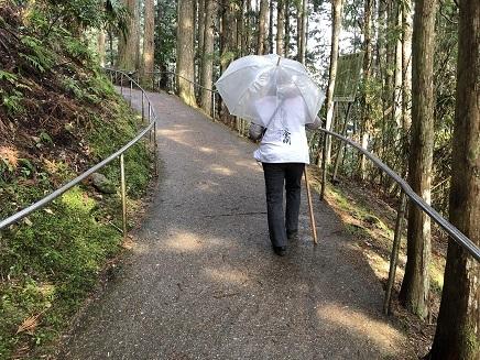 4012019 45番岩屋寺へ歩く S4