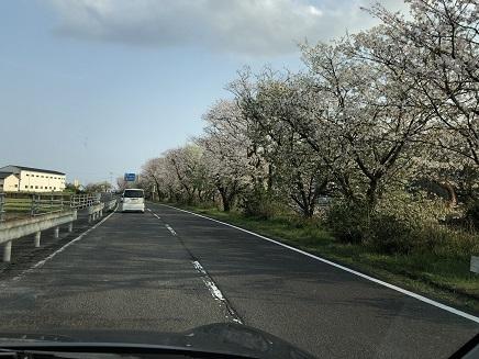 3302019 足摺岬へ(38番)足摺サニー道路 S4