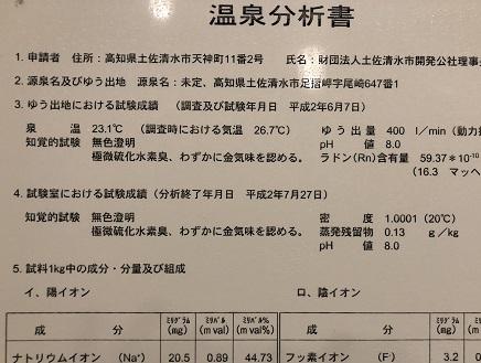 3302019 足摺国際H温泉 S4
