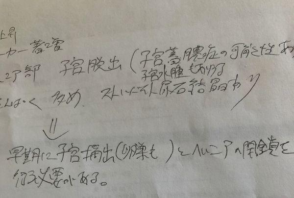 IMG_9645子宮
