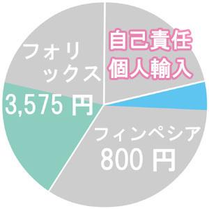 自己責任の円グラフ
