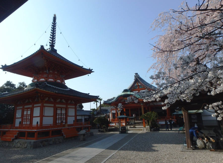 さくら龍泉寺