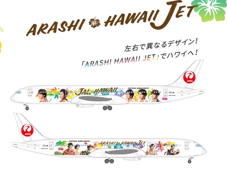 JAL ARASHI HAWAII JET